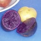 VeggieChefLaura