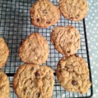 Protein Peanut Butter Chocolate Chip Cookies - Tasty cookies with a protein supplement, perfect for people who work out and are grossed out by protein shakes. Can substitute flavored supplements for a fruity twist.