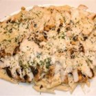 Easy Chicken Alfredo II - Leftover chicken breast in a cottage cheese sauce, served on a bed of fettuccine pasta.