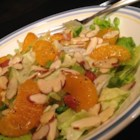 Poppy Seed Salad - Use your blender to make a poppy seed dressing to top a salad of lettuce, mandarin oranges, green onions, and almonds with this recipe.