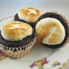 Toasted Marshmallow Cupcakes - Moist chocolate cupcakes are topped with a marshmallow and broiled into tasty, toasted marshmallow cupcakes.