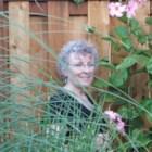 Yvonne Wehr