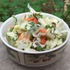Latin Slaw - Great slaw for a steak, tacos, or just for a side dish with a special Latin flavor!