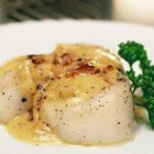 Scallops with White Wine Sauce I - Sea scallops with a creamy white wine and butter sauce.