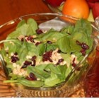 Sparkling Cranberry Dressing - Made with club soda, cranberry sauce, sugar, and cinnamon, this quick and easy sparkling dressing is perfect for a spinach salad.