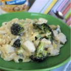 Chicken and Broccoli Alfredo Orzo - Chicken, broccoli, and orzo are simmered in creamy Alfredo sauce for this easy, family-pleasing one-skillet meal.