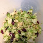 Brussels Sprout Slaw - Brussels sprouts, dried cherries, almonds, and Parmesan cheese are tossed in a simple vinaigrette in this quick and easy Brussels sprouts slaw.