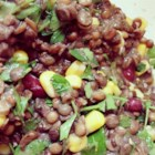 Cheap and Easy Lentil Salad - This budget-friendly lentil salad recipe uses canned kidney beans and corn.