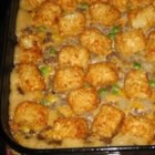 Tater Tot Casserole - This kid-friendly ground beef skillet casserole goes from stovetop to oven, and straight to the table in 35 minutes.