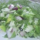 Fennel Cucumber Salsa - This is a fresh and unusual salsa. Use it as an appetizer or on grilled meats. The fennel has a surprisingly light flavour. Perfect for summer.