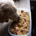 Good Dog Cookies - A gift idea your canine friends will beg for!