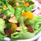 Almond Mandarin Salad - Sweet mandarin oranges, crunchy almonds, fresh green onion, and crispy bacon are all tossed together with red leaf lettuce and a light honey mustard vinaigrette. Oh, so good and refreshing. Enjoy!