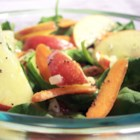 Apple, Pecan, Cranberry, and Avocado Spinach Salad with Balsamic Dressing - I like using Cripp, Braeburn, or Gala apples in this yummy salad!