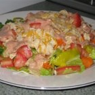 Santa Fe Chicken Salad - This recipe makes four composed salads that are delicious and fun to make. Lettuce is piled on each plate, then tomatoes and green onions are sprinkled on. Next come the yummy slices of grilled chicken and a handful of tortilla  'crispies.' Finish with a zesty Italian dressing.