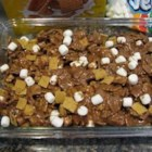 Indoor S'mores - Honey graham cereal chocolate marshmallow squares!