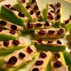 Ladybugs on a Log - Cranberry ladybugs are piled on top of a celery log filled with raspberry cream cheese.