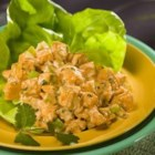 Simple Southwestern Chicken Salad - Chicken breast with mayo, celery, cilantro and taco seasoning for that Southwestern flair.