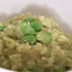 Green Risotto with Fava Beans - Risotto flavored with fava beans, onion, broth and white wine. Can be made with either chicken broth or vegetable broth.
