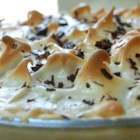 Chocolate Meringue Pie - The lovely chocolate custard filling in this pie is creamy and very chocolaty. It 's cooked in a double boiler until pudding-thick, poured into a baked pastry shell, and slathered with meringue. After six minutes in a hot oven, it 's ready to serve.
