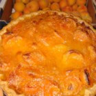 Fresh Apricot Pie - 'This is a nice change of pace from the more traditional fruit and berry pies,' says Ruth Peterson of Jenison, Michigan. 'Apricots are very nutritious and delicious!'