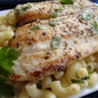 Pan Seared Lemon Tilapia with Parmesan Pasta - Tender tilapia fillets are seasoned with lemon and herbs, and served over Parmesan pasta for a light, fresh taste.