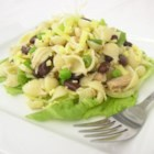 Tuna Pasta Salad - This delightful salad is a quick and easy toss of delicate sea shell pasta, chopped lettuce, sliced scallions, canned tuna, peas and Cheddar cheese. Pour in your favorite mayonnaise or creamy salad dressing to finish the dish.