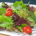 Honey Dijon Balsamic Vinaigrette - Serve this easy and delicious vinaigrette with your favorite salad or with bread, as a dipping sauce.