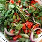 James' Fire Salad - A nice, spicy green salad, made by tossing red leaf lettuce with ripe tomatoes, fresh cilantro, and spicy peppers.