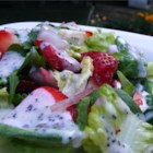 Strawberry Summer Salad - This recipe makes a poppy seed salad dressing and a green salad with strawberries. Combine the two for a unique salad option.