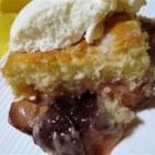 Plum Buckle - A tender cake bakes itself up and around a thick layer of fresh plums. Streusel topping adds another layer of flavor and texture.