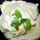 Nicole's Garbanzo-Citrus Spread - Hummus masquerades as guacamole in this tasty dip made with a food processor. Garlic, jalapeno peppers, tahini, orange juice, and avocado are blended together in minutes with delicious results.
