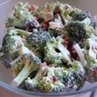 Alyson's Broccoli Salad - Made ahead, a bowl of this salad would make a well-rounded lunch, or dinner for one of those too-busy-to-cook nights.  The crunchiness of the broccoli, sunflower seeds and crisp crumbled bacon make the perfect foil for the mayonnaise-based dressing.