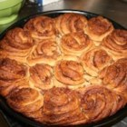 Danish Cinnamon Snails - The cardamom-spiced dough makes these Danish cinnamon rolls stand apart from the sweet roll crowd! Frost with a confectioners' sugar glaze, if desired.
