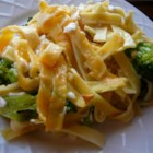Broccoli Noodles and Cheese Casserole - This pasta is made creamy by cottage cheese, and Cheddar cheese adds zing. Once you toss in bright green steamed broccoli this dish is a great source of vitamins as well as calcium.