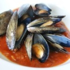 Appetizer Mussels - Spicy steamed mussels in white wine and tomato juice.