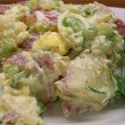 Red Potato Salad - This pretty red potato salad has great flavor. Goes well with a summer barbeque, or anytime!  For a tangy twist, try using plain fat-free yogurt in place of some or all of the sour cream. Garnish with additional sliced hard-boiled eggs, if desired.