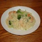 Kahala's Shrimp and Broccoli Toss - Very pretty pasta toss with baby shrimp and bright green broccoli florets nestled in a light yet buttery sauce and served tossed with your favorite pasta.