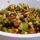 Mexicorn - Light and savory, crunchy and sweet, this corn and black bean salad is studded with roasted red peppers, fresh green peppers and red onion. This can be served as a salad or even a dip for chips!
