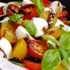 Insalata Caprese I - Thick wedges of ripe tomatoes, fresh Mozzarella and slices of red onion are tossed in olive oil and vinegar and sprinkled with chopped, fresh basil. Chill and eat.