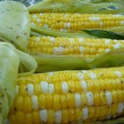 BBQ & Grilled Corn on the Cob