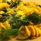 Vegan Lentil, Kale, and Red Onion Pasta - A simple, delicious, and versatile dish that is naturally vegan, but can be easily altered to accommodate both vegan and omnivorous eaters--excellent for family dinners and gathering where there will be people with a variety of food preferences. For meat-eaters, use grated Parmesan cheese instead of the nutritional yeast, and andouille sausage instead of the vegan sausage.
