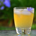 Orange Fizz - Make boring orange juice tangy and fizzy with this delicious blend!