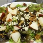 Apple-Cranberry Salad - Great salad you can serve on the side of a main dish or add roasted chicken and have as a meal! Chopped Belgian endive and radicchio can be substituted for the baby greens if you prefer a more exotic twist on salad recipes.