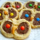 Owl Cookies - A slice and bake cookie. Owl faces with cashew beaks. Great for Fall.