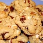 Stephen's Chocolate Chip Cookies - I created this recipe for my father on his birthday. It contains lots of different chocolates and nuts. Thanks Dad for sending me to cookie baking school at the San Francisco Culinary Academy! This one is just for you!