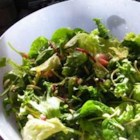 Crunchy Lettuce - Very crunchy. Crispy noodles, sliced almonds and sesame seeds do their part in making this shredded salad a hit. The dressing is a sweet vinaigrette that brings out all the nice flavors.
