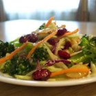 Cran-Broccoli Salad - A wonderful festive broccoli slaw salad. Great make ahead recipe and very versatile.