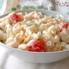 Macaroni and Cheese Salad - This is pure picnic food, but can work as a winter 's evening supper as well. Macaroni noodles are cooked up and splashed with vinegar and then folded into chilled veggies  - tomatoes, cheese, peppers, green onions, and celery. Then comes the herbed mayonnaise. Serves six.