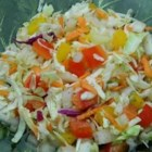 Coleslaw II - This colorful slaw is dotted with red and yellow bell peppers, grated carrots and chopped celery, and tossed in a tangy and sweet, dill-flecked vinaigrette.
