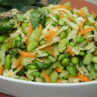 Edamame Salad - This flavorful edamame salad has a light rice wine vinegar and sesame oil dressing that is tossed with bok choy, carrots, and Napa cabbage. It is topped with black sesame seeds and daikon radish for an extra kick.